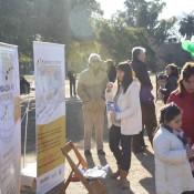 Exitosa campaña de detección e información sobre Hepatitis B y C en Palermo, múltiples sectores previniendo e informando